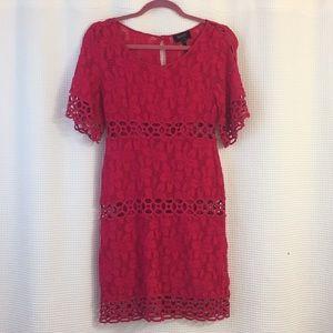 Laundry by Shelli Segal Pink Lace Dress, 4P